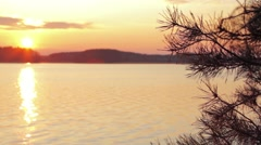Branch of pine with the sunset over the lake in background Stock Footage