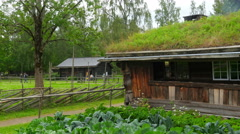 Farm with beautiful norwagian village green grass rooftop, norway, 4k Stock Footage