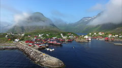 Flying with seagulls on Lofoten islands in Norway. Stock Footage