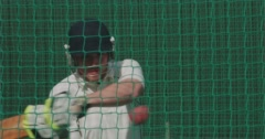 Rapt.tv 10077 Cricket Stock Footage
