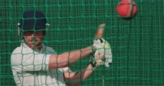 Rapt.tv 10076 Cricket Stock Footage