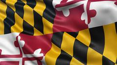 US state flag of Maryland - stock photo
