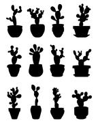 cactus at potted - stock illustration