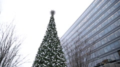 DC Christmas Tree in the Rain - stock footage