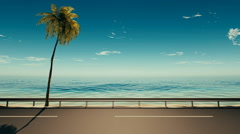Asphalt road near the sea with a palm tree - stock footage
