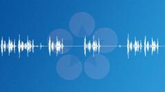 Analog PBX Relay 05 1 Short Sound Effect