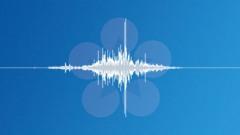 Swoosh_Swish_005 - sound effect