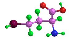 Molecular structure of homocysteine - important amino acid Stock Illustration
