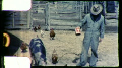 Farmer Feeds Pigs Chickens Barnyard Farm 1960s Vintage Film Home Movie 9292 Stock Footage