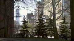 Evergreen Christmas trees in Washington Square Park with Freedom Tower in NYC Stock Footage