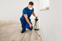 Mid adult male worker spraying pesticide on wall at home Stock Photos