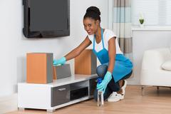 Young African Woman Cleaning Furniture In Living Room Stock Photos