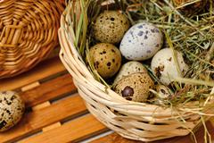 Dietary quail eggs in a basket. Easter. - stock photo