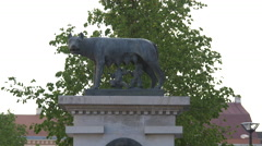 Capitoline Wolf Statue, Cluj-Napoca Stock Footage