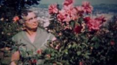 1959: Original Portlander gardener admires pink rose bush flowers. PORTLAND, Stock Footage