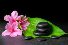 beautiful spa concept of pink hibiscus flowers, green leaf and stones pyramid - stock photo
