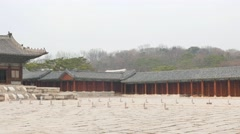 Myeongjeongjeon, main hall of Changgyeonggung. Stock Footage