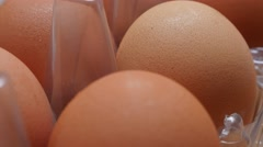 Modern plastic egg box with lot of fresh organic eggs  in the row  Stock Footage
