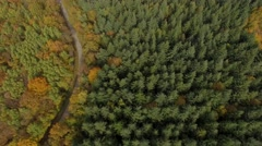 Forest in autumn in Isere, France – aerial view by drone Stock Footage