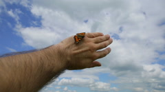 Butterfly sat on the arm summer day against the sky with clouds Stock Footage