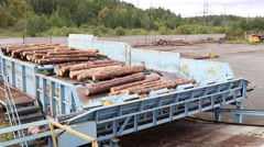 Wheel loader and automatic sorting logs diameter at the sawmill Stock Footage