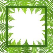Jungle poster. Fern frond background. Vector illustration. Stock Illustration