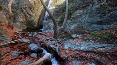 Stock Video Footage of Small waterfall in the woods in Cyprus