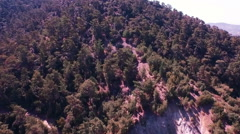 AERIAL: Flight over trees - Troodos, Cyprus Stock Footage
