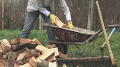 Lumberjack loading wood logs to wheelbarrow - stock footage