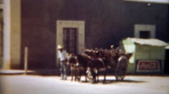 1948: Coca Cola sign with man donkey cart of wood sticks. MEXICO CITY, MEXICO - stock footage