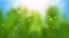 Sunbeams on blurry background seamless loop 4k (4096x2304) Stock Footage