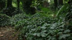 Cemetery Angels Vines Roving - 4k Stock Footage