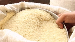 Distributing rice close up - stock footage