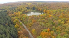 Forest and ponds in Isere, France – aerial view by drone Stock Footage