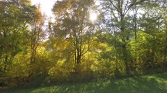 Forest and fields in Isere, France, view by drone Stock Footage