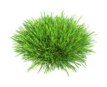 Fresh green grass piece of land isolated on white background - stock illustration