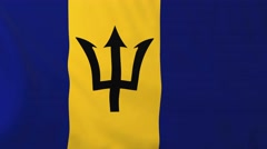 Flag of Barbados waving in the wind. Stock Footage