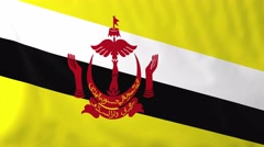 Flag of Brunei waving in the wind. - stock footage
