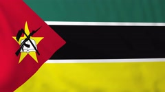 Flag of Mozambique waving in the wind. Stock Footage