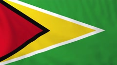 Flag of Guyana waving in the wind. Stock Footage