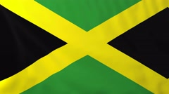 Flag of Jamaica waving in the wind. - stock footage