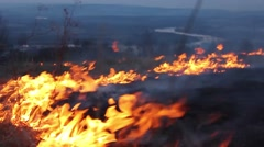A fire in a forest glade. Burning grass. Stock Footage