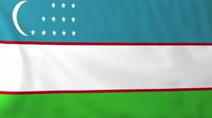 Stock Video Footage of Flag of Uzbekistan waving in the wind.
