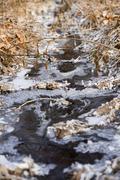 Mountain's river amongst frozen grass Stock Photos