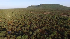 Rural track through scrubland in summer in Gard, Languedoc-Roussillon, France – - stock footage