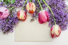 Frame from tulips and lilac and place for text greeting card Stock Photos