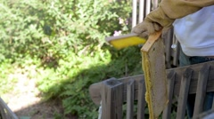Beekeeper brushes bees off honeycomb frame. Stock Footage