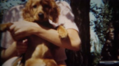 1952: Shy girl gets new golden retriever puppy for spring. GREELEY, COLORADO Stock Footage