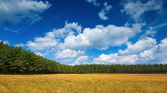 4k Timelapse of stubble field under blue clouds with clouds Stock Footage
