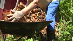 Male hand unload chopped wood in pile. Season work in garden. 4K Stock Footage